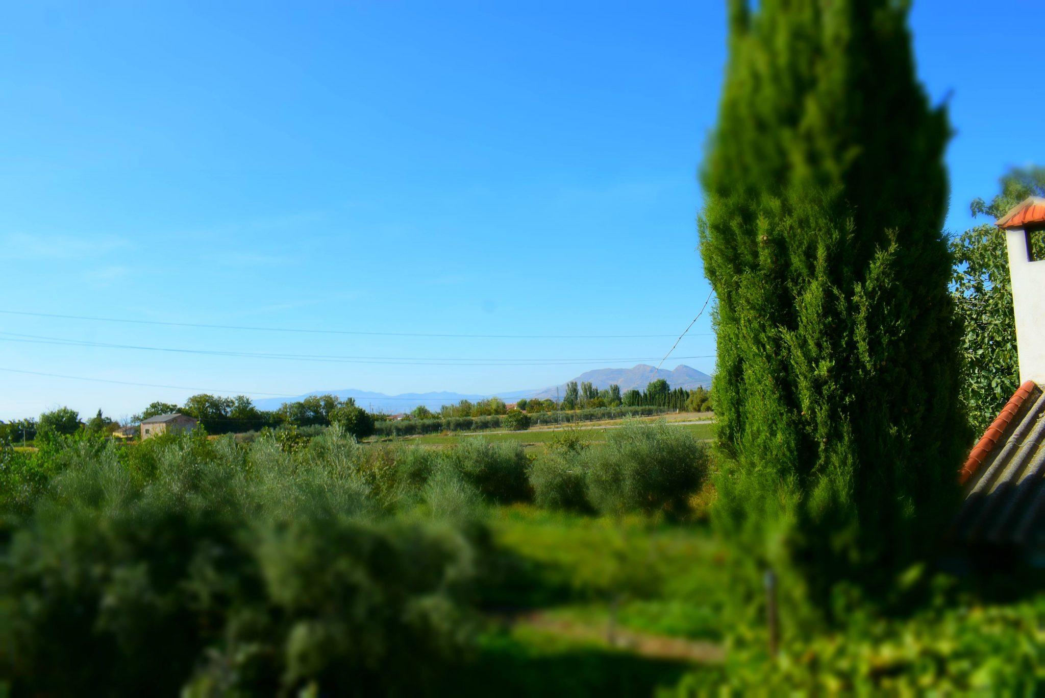 Finca con naves, vivienda y terreno rústico Vega de Granada