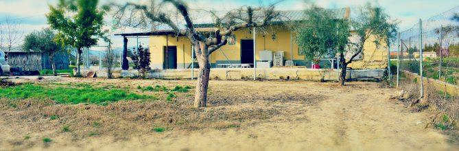 Finca rústica en Santa Fe – Casa y terreno con olivos